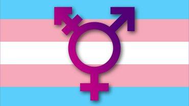 Trans Pride Flagge mit Trans-Symbol